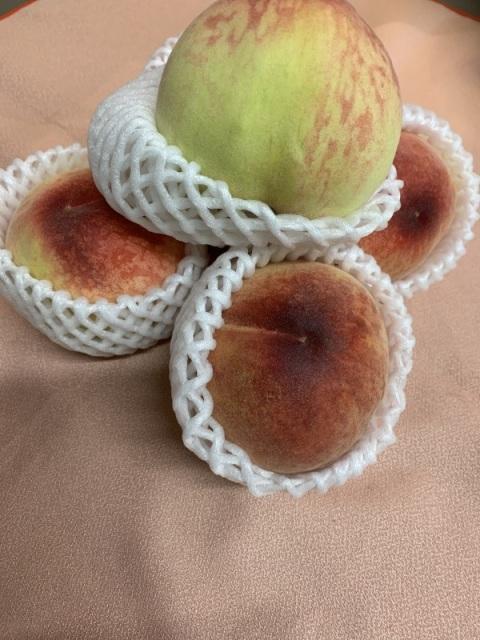 桃のケーキ桃、新作、夏ケーキ,期間限定